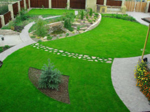 Что такое ленивый газон