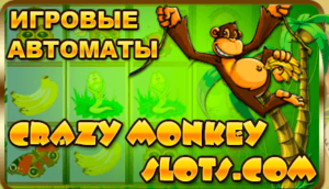Обзор автомата Crazy Monkey